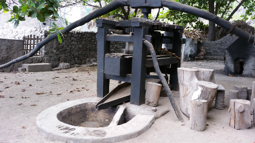 Grogue press, Trapicho, Santa Antao